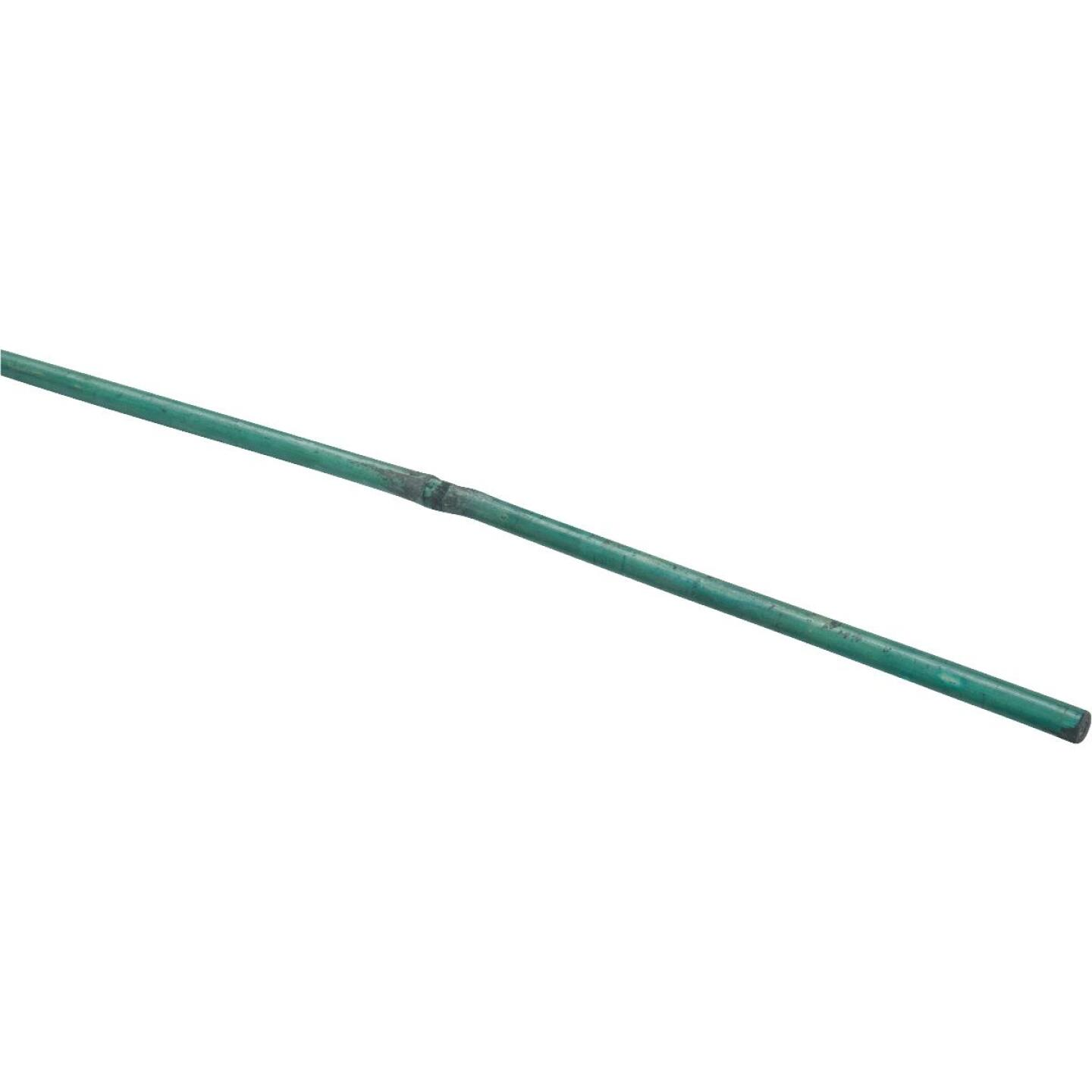 Bond 3 Ft. Green Bamboo Plant Stakes (25-Pack) Image 2